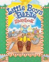Little Boys Bible Storybook - Carolyn Larsen