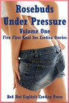 Rosebuds Under Pressure Volume One: Five First Anal Sex Erotica Stories - Skyler French, Marilyn More, Rennaey Necee, April Styles, Dominique Angel
