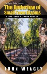 The Undertow of Small Town Dreams: Stories of Currie Valley - John Weagly