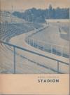 Stadion - Boro Pavlović