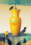 The Secret Life of Objects - Dawn Raffel, Sean Evers