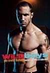 Wild Boys: Gay Erotic Fiction - Richard Labonté, Davem Verne