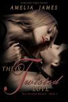 Their Twisted Love - Amelia James