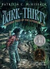 The Dark-Thirty: Southern Tales of the Supernatural (Newbery Honor Book) - Patricia C. McKissack, Brian Pinkney