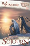 Sojourn: The Graphic Novel (Legend of Drizzt: The Graphic Novel, #3) - R.A. Salvatore, Andrew Dabb, Tim Seeley