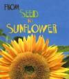 From Seed to Sunflower - Anita Ganeri