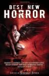 The Mammoth Book of Best New Horror 21 - Stephen Jones