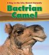 Bactrian Camel - Anita Ganeri
