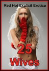 25 Wives: Twenty-Five Hot Wife Erotica Stories - Sarah Blitz, Connie Hastings, Nycole Folk, Amy Dupont, Angela Ward, Fran Diaz, Tawna Bickley, Susan Fletcher, Morghan Rhees, Cassie Hacthaw