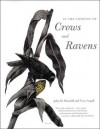 In the Company of Crows and Ravens - John M. Marzluff, Tony Angell, Paul R. Ehrlich