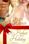 A Perfect Holiday - Riley Murphy