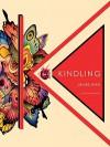 Kindling: 12 Removable Prints - James Jean