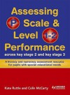 Assessing P Scale And Level 1 2 Performance Across Ks2 And Ks3: A Literacy And Numeracy Assessment Resource For Pupils With Special Educational Needs - Kate Ruttle