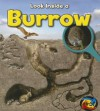 Burrow - Richard Spilsbury