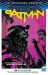 Batman Vol. 2: I Am Suicide (Rebirth) - Mikel Janin, Tom King, David Finch