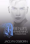 Benji's Awakening - Jaclyn Osborn