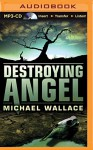 Destroying Angel (Righteous Series) - Michael Wallace, Arielle DeLisle