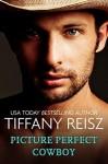 Picture Perfect Cowboy - Tiffany Reisz