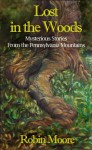 Lost in the Woods: Mysterious Stories from the Pennsylvania Mountains - Robin Moore, Rachel Moore