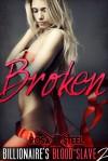 Broken - Rosa Steel