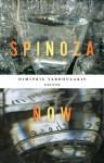 Spinoza Now - Dimitris Vardoulakis, Christopher Norris, Alain Badiou, Simon Duffy, Justin Clemens, Michael Mack, Arthur Jacobson, Warren Montag