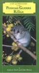 A Key and Field Guide to the Australian Possums, Gliders & Koala - Andrew Smith, John Winter