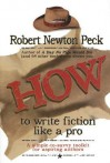 How to Write Fiction Like a Pro: A Simple-To-Savvy Toolkit for Aspiring Authors - Robert Newton Peck