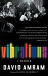 Vibrations: The Adventures and Musical Times of David Amram - David Amram, Douglas G. Brinkley, Douglas Brinkley