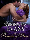 A Promise of More - Bronwen Evans