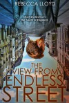 The View from Endless Street: Short Stories from the South of England - Rebecca Lloyd
