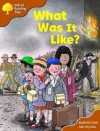 What Was It Like? (Oxford Reading Tree: Stage 8: More Storybooks: Magic Key) - Roderick Hunt, Alex Brychta