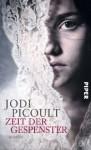 Zeit der Gespenster: Roman - Jodi Picoult