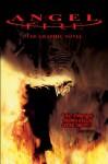 Angel Fire: The Graphic Novel - Chris Blythe, Chris Blythe, Steve Parkhouse