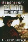 Fighting Phantoms (Bloodlines) - M. Zachary Sherman, Fritz Casas