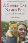 A Street Cat Named Bob: And How He Saved My Life (Wheeler Large Print Book Series) - James Bowen