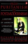 From Puritanism to Postmodernism: A History of American Literature - Richard Ruland, Malcolm Bradbury