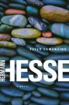 Peter Camenzind - Hermann Hesse, Michael Roloff, هرمان هيسه