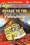 Voyage to the Volcano - Judith Bauer Stamper, Joanna Cole, John Speirs, Bruce Degen