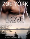 Love in a Small Town: The Soldier's Second Chance (Pine Harbour Book 1) - Zoe York