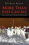 More Than Eyes Can See: A nine month journey through the AIDS pandemic. - Rhidian Brook