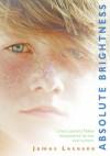 Absolute Brightness - James Lecesne