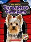Yorkshire Terriers - Sara Green