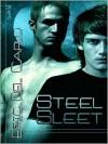 Steel Sleet - Eric Del Carlo