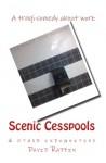 Scenic Cesspools & other indignities - David Raffin