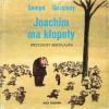Joachim ma kłopoty - Jean-Jacques Sempé, René Goscinny, Barbara Grzegorzewska