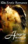 Angels Would Fall - J.S. Wayne