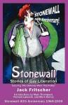 Stonewall: Stories of Gay Liberation - Jack Fritscher, Mark Hemry