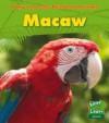 Macaw - Anita Ganeri