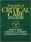 Principles Of Critical Care - Jesse B. Hall, Lawrence D.H. Wood, Gregory A. Schmidt