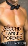 Second Chance at Forever - Natalie J. Damschroder